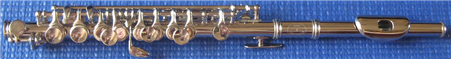 Piccolo Nickel